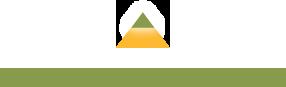 New Orleans logo